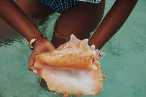 conch island